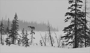 Lapland Biosphere Reserve - Image: Lapland reservate