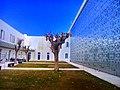 Le jardin de l'institut français de Tunisie حديقة المعهد الفرنسي بتونس.jpg