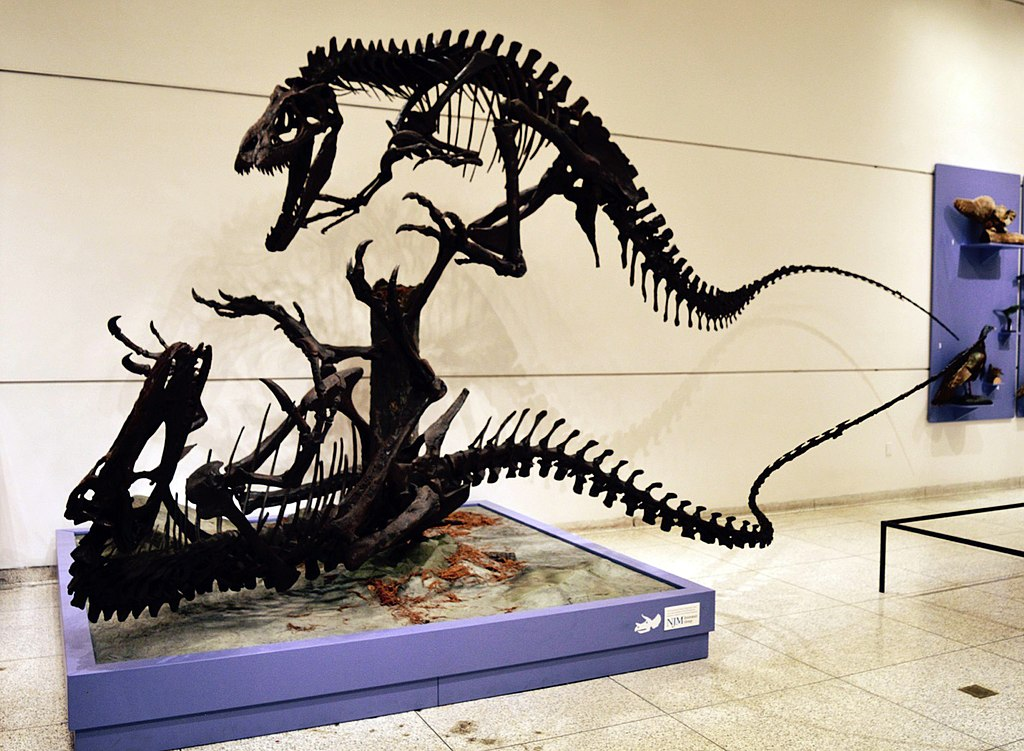 New Jersey State Museum - Virtual Tour