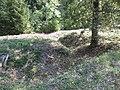 Les entonnoirs de Leintrey - ancienne tranchée 001.jpg