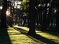 Liepāja, Piejūras parks - panoramio.jpg