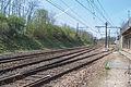 Ligne de Bourron-Marlotte à Malesherbes - 2013-04-21 - IMG 9283.jpg