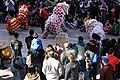 Lion Dance, Chinese New Year 2013 at the Crow Collection 13.jpg