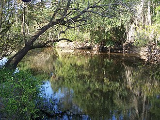 Little Manatee River State Park - Image: Little Manatee River SP river 01