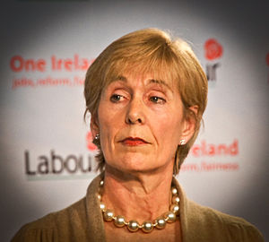Liz McManus - Image: Liz Mc Manus TD, Labour Party Development of broadband infrastructure key to jobs and recovery