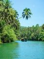 Loboc river, Bohol.png