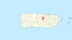 Location of Corozal in Puerto Rico