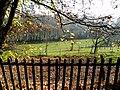Loex, Promenade le long du Rhone - panoramio (9).jpg