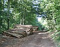 Logs, Parks Farm - geograph.org.uk - 48786.jpg