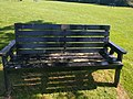 Long shot of the bench (OpenBenches 6596).jpg