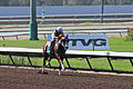 Los Alamitos Sept 2014 IMG 6798 edited-1 (15317821465).jpg