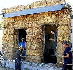 Lotan025b- straw walls imp.1.jpg