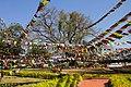 Lumbini-16-Bodhi-Baum-Gebetsfahnen-2013-gje.jpg
