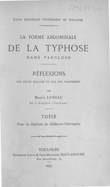 File:Luneau - La forme abdominale de la typhose dans Vaucluse.djvu