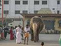 MANTRALAYAM-Dr. Murali Mohan Gurram (11).jpg