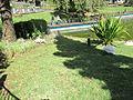 Madeira em Abril de 2011 IMG 1773 (5663785566).jpg