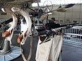 Madsen M31 20mm automatic gun AA on naval mount in Aalborg Forsvars- og Garnisonsmuseum, pic4.JPG