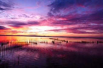Magnificent sunset in Albufera lake, Valencia.jpg