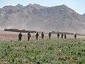 Maiwand, Afghanistan - panoramio (22).jpg