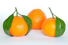 Mandarin Oranges (Citrus Reticulata).jpg