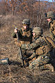 Marines Prepare for Platinum Lion with Live Fire Exercise 150106-M-KK554-840.jpg