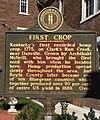 Marker describing Kentucky's first hemp crop, recorded in 1775. Danville Courthouse, Kentucky,.jpg