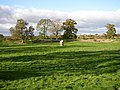 Mayburgh Henge, northern part with standing-stone, Yanwath and Eamont Bridge - geograph.org.uk - 273923.jpg