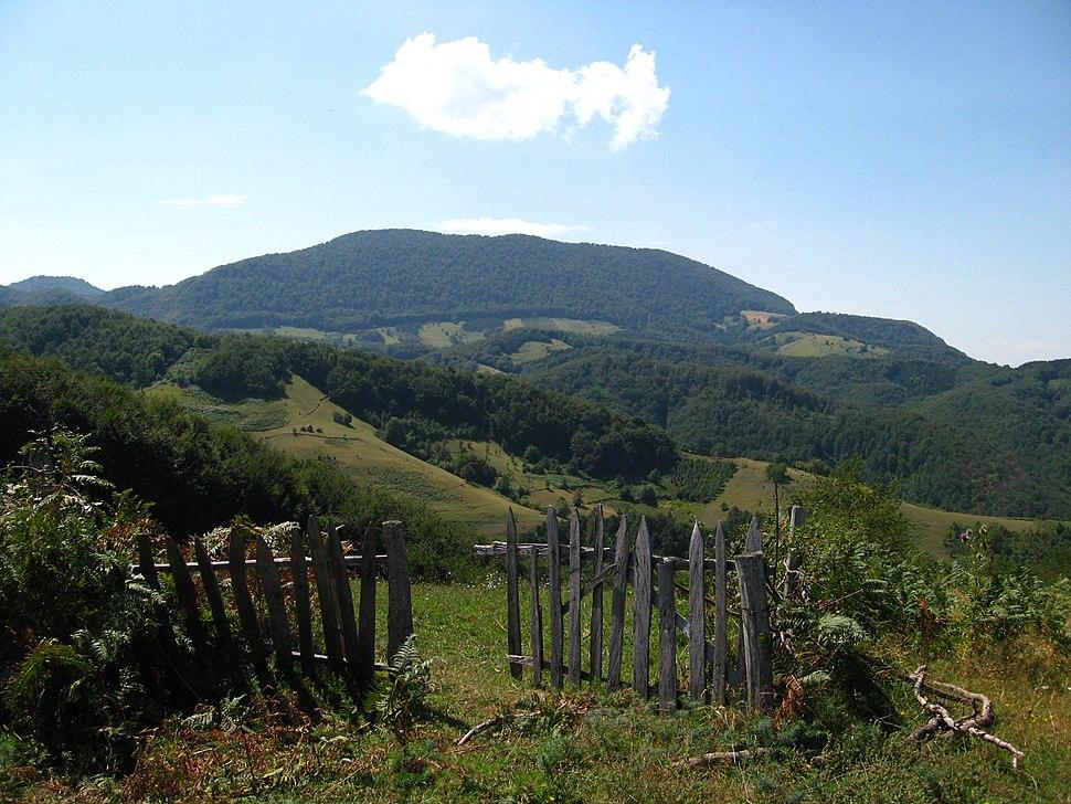 Medvednik - zapadna Srbija - Pogled sevrne obronke planine Medvednik 6