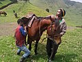 Men looking after horses in Goma DRC...2.jpg