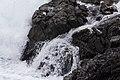 Mendocino Headlands State Park - 19.jpg