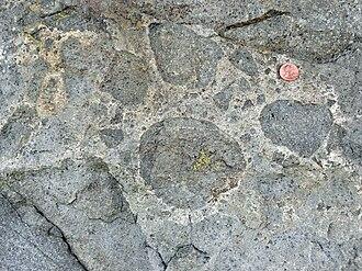 Metaconglomerate - Jurassic metaconglomerate at Los Peñasquitos Canyon Preserve, San Diego County, California.