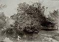 Miensk, Mieski Sad. Менск, Мескі Сад (1901-17).jpg