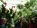 MoBot Tour for EOL Council - Flickr - treegrow.jpg