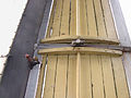 Molen De Prins van Oranje, Bredevoort Ten Have-klep kleplagersteun (2).jpg