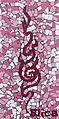 Mosaic van elica (3933733407).jpg