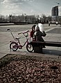 Moscow, mother and child in Victory Park (5653941833).jpg