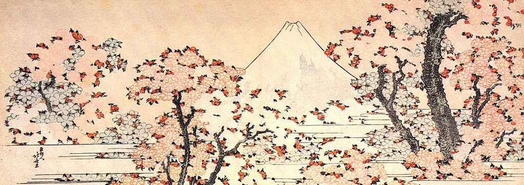File Mount Fuji Seen Throught Cherry Blossom Jpg
