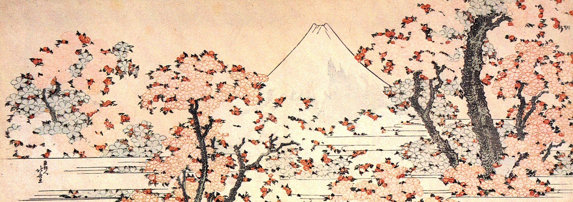 葛飾北齋的櫻與富士山。
