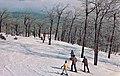 Mount Tom Ski Area slopes, Holyoke, Massachusetts (c. 1969).jpg