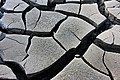 Mud cracks.jpg