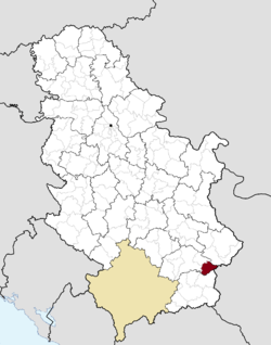 Location of the municipality of Crna Trava within Serbia