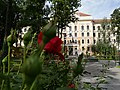 Muzeul Țării Crișurilor, exterior.jpg