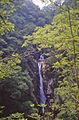 Mynach Waterfall - geograph.org.uk - 1467233.jpg
