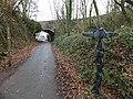 NCN Millennium Milepost MP120 Frithelstock Devon.jpeg