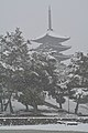 Nara, Koufuku-ji 20140201.JPG