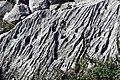 National park Paklenica in 2014 (4).JPG