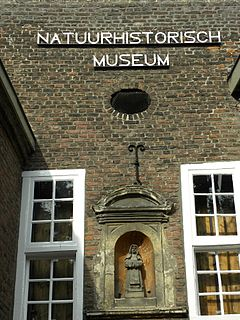 Natural history museum in Maastricht, Netherlands
