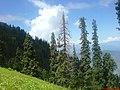 Near Tor-Kanshian - panoramio.jpg