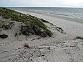 Neringos paplūdimys - panoramio.jpg