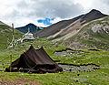 Nomads of Tibet2.jpg